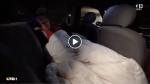 A 71 ans, elle vit dans sa voiture, au 2eme sous-sol d'un parking…